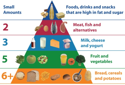 Dietary Requirements For A Toddler